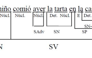 Análisis oración simple